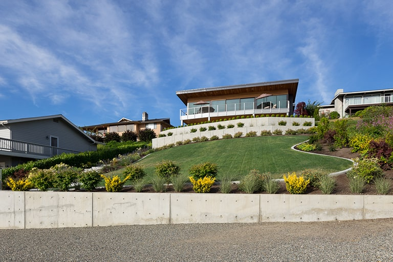 cement retaining wall with large grass lawn and native plants surrounding